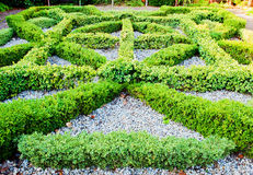 Knot garden Royalty Free Stock Photos