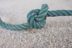 Knot green on sand Royalty Free Stock Photography