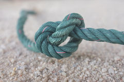 Knot green on sand Royalty Free Stock Images