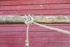 Knot on a hitching post Stock Image