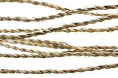 Knot of multicolored ropes Stock Images