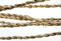 Knot of multicolored ropes Stock Photos
