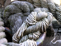 Knot or not?. Serious knot of a rope in the port Stock Photo