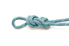 Knot on rope. Figure eight on a bight knot on white Stock Images