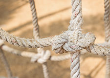 Knot rope of network Royalty Free Stock Images