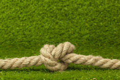 Knot on rope over green grass Royalty Free Stock Image
