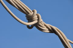 Knot in rope Royalty Free Stock Photo