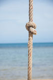 Knot on the rope and sea Royalty Free Stock Images