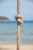 Knot on the rope and sea Royalty Free Stock Photography