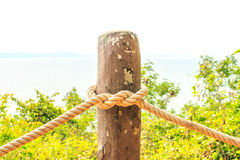 Knot of rope. Royalty Free Stock Photography