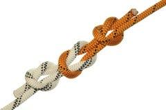knot straight Στοκ Εικόνες