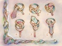 Knot tie Stock Image
