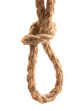Knot tied by a rope Royalty Free Stock Images