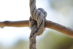 Knot of torn old rope. With blurred natural background royalty free stock photo