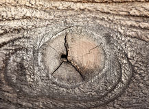 Knot in wood Stock Photography
