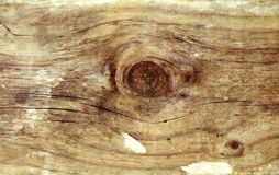 Knot in wood. Closeup of knot in wood texture Stock Photography