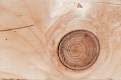 Knot on Wood Panel Stock Photo