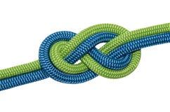 Knoten acht von zwei Seilen Stockbild