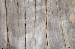Knotenholz Hintergrund Lizenzfreies Stockfoto