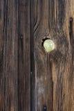 knotho tła wizjer weathersa drewna Obraz Royalty Free