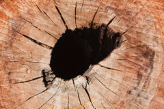 Knothole Royalty Free Stock Images