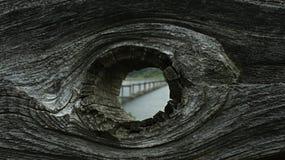 knothole Immagine Stock Libera da Diritti