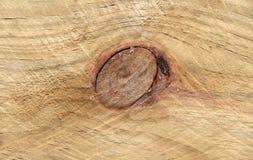 Knothole detail on wood. Stock Image