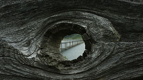 Knothole Royalty Free Stock Image