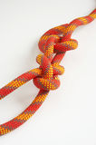 Knots. From a multi-coloured cord on a white background royalty free stock images