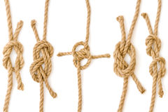 Knots Royalty Free Stock Image