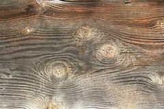 Knots on spruce wooden texture Royalty Free Stock Images