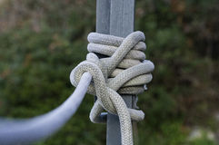 Knots Stock Photo
