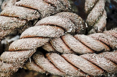 Knotted Rope Stock Photo