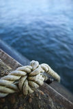 Knotted rope Royalty Free Stock Image