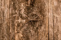 Knotted Wood Background Royalty Free Stock Photography