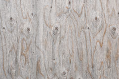 Knotted wood Royalty Free Stock Image