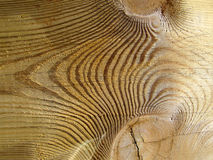Knotted wood texture. Abstract background texture of a knotted wooden plank Royalty Free Stock Image