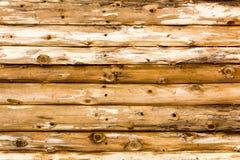 Knotty Achtergrond Stock Fotografie