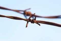 Knotty barbwire Stock Photography