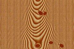 Knotty pine Stock Image