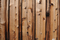 Knotty Pine Wood Background Stock Image