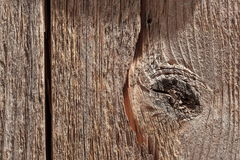 Knotwood. Proxyphotography of a knotwood used as a texture or a background Stock Photos