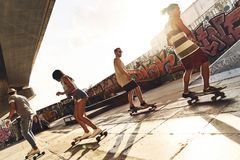 They know how to skate. Royalty Free Stock Photo