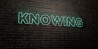 KNOWING -Realistic Neon Sign on Brick Wall background - 3D rendered royalty free stock image. Can be used for online banner ads and direct mailers Royalty Free Stock Image