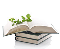 Knowledge. Plant growing out of open book Stock Photo