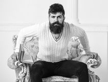 Knowledge concept. Macho smart spends leisure with book. Scientist, professor on serious face explores literature. Man. With beard and mustache sits on armchair royalty free stock photo