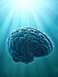 Knowledge and creativity concept Stock Images