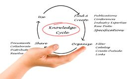 Knowledge Cycle Stock Photo