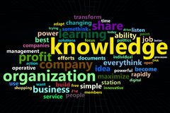Knowledge 3d wordclouds concept. On digital mesh Royalty Free Stock Photos