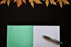 Knowledge day: notebook, pen and autumn leaves on the Desk by September 1. copyspace. square royalty free stock image